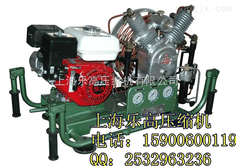 VF-206B呼吸空气压缩机