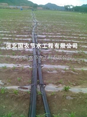 河北国农滴灌管滴灌带