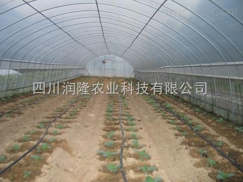 四川滴灌喷灌/高效节水灌溉/贵州喷灌滴灌