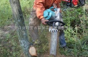 供应2ZYLJ-1履带式多功能烟草移栽机