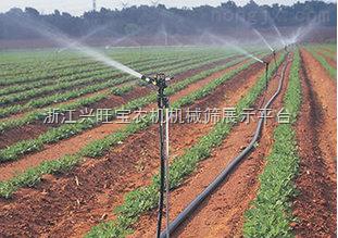 供应国农16mm农用滴灌专用侧翼迷宫滴灌带