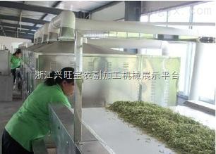 供应潍坊|金银花杀青机|药材杀青机|潍坊信达干燥|