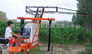供应zui新型水稻喷药机水稻打药机水田喷药机