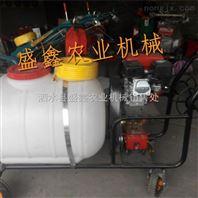 农药喷洒机 背负式喷雾机喷粉机 厂家生产
