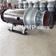 卧式潜水轴流泵_德能泵业_低水位运行