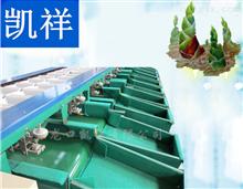 XGJ-ZS竹笋分级设备 竹笋重量分选 竹笋自动选果机