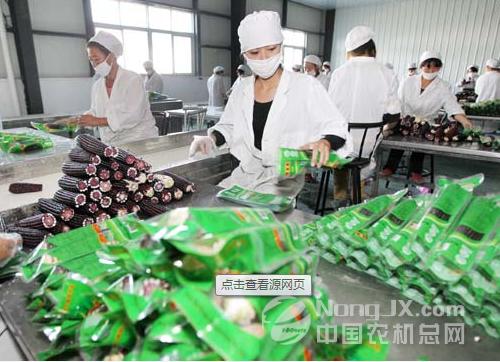 湖北农产品加工业跨入万亿【图】